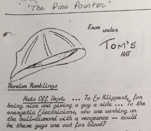 Pine Pointer